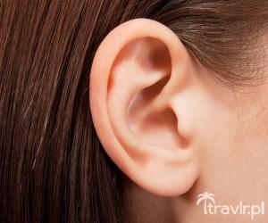 Ludzkie ucho